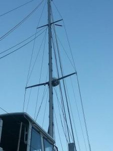 Wildflower's mast rises again